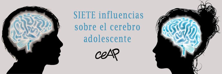 SIETE INFLUENCIAS SOBRE EL CEREBRO ADOLESCENTE